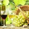 Как сделать домашнее вино: этапы приготовления