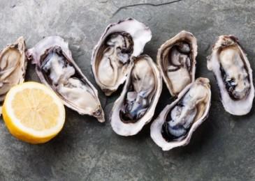 Стоит ли есть сырых моллюсков?