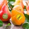 Так ли страшен ГМО: аргументы «За» и «Против»